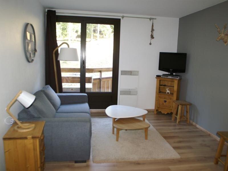 2 pièces au pied des pistes résidence Sapins, holiday rental in Sainte-Agnes
