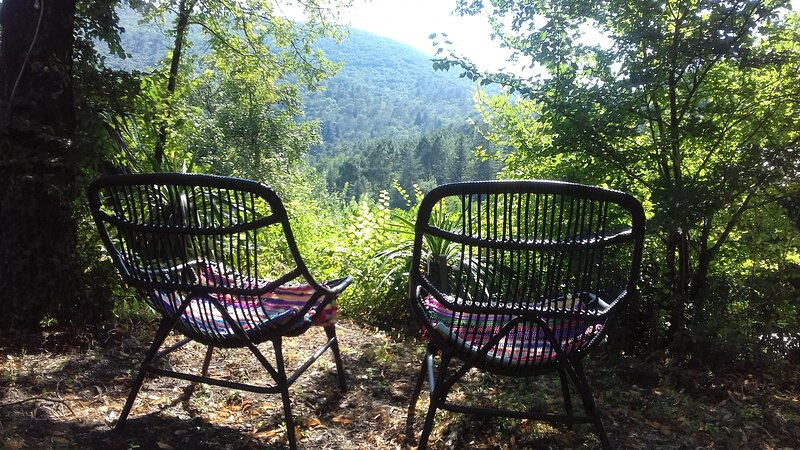 Le Miracle, appartment Le Gîte (2p), Cévennes, 'in a living painting', holiday rental in Meyrannes