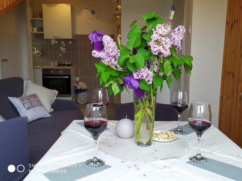 Apartments Pipunic - One Bedroom Apartment with Sea View A1, vacation rental in Prvic Sepurine