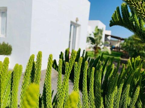 habitacion joy, location de vacances à Lajares