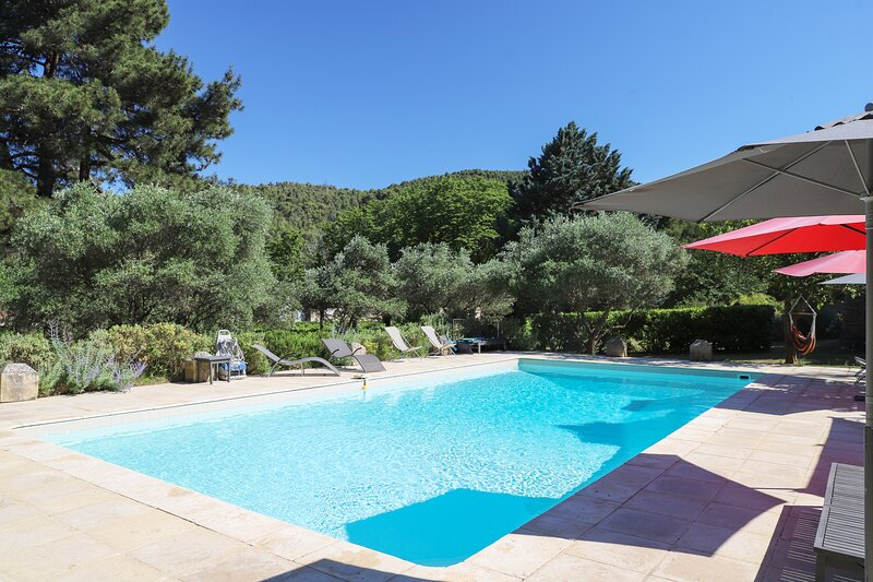 Amazing mansion with swimming-pool, holiday rental in Villespassans