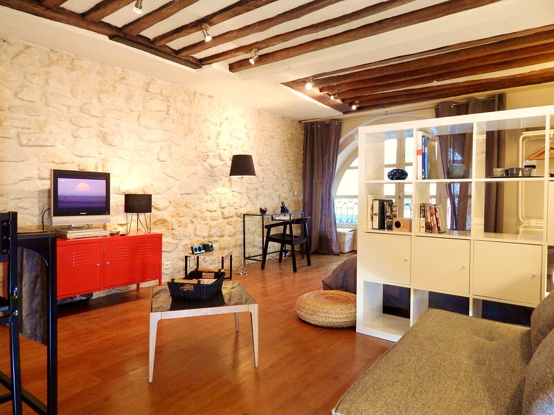 Air conditioning - LOUVRE MUSEUM – 17th CENTURY building - Near Velib and metro, holiday rental in Paris