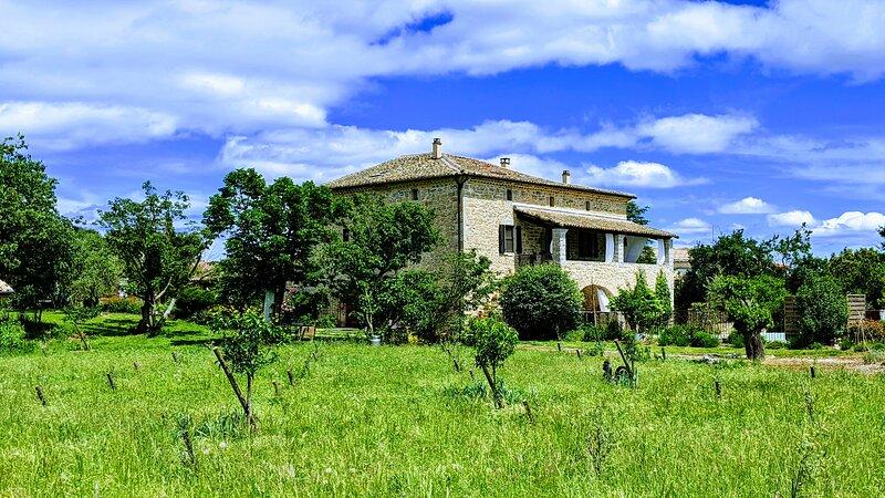 Magnifique mas cévennol du 19 ème siècle entre le Gard et l'Ardèche, vacation rental in Meyrannes