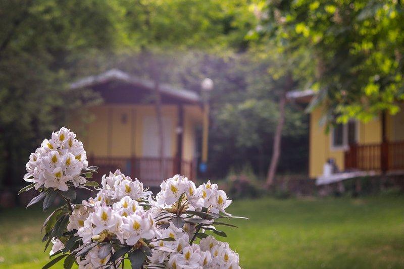 Cosy bungalow for 2 or 3 persons, aluguéis de temporada em Kato Poria