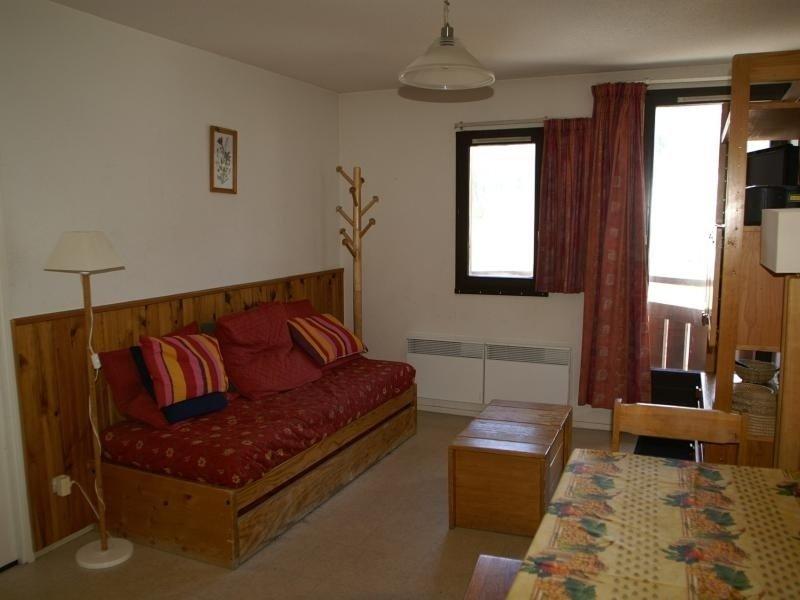 2 pièces cabine au pied des pistes résidence Edelweiss, holiday rental in Prapoutel