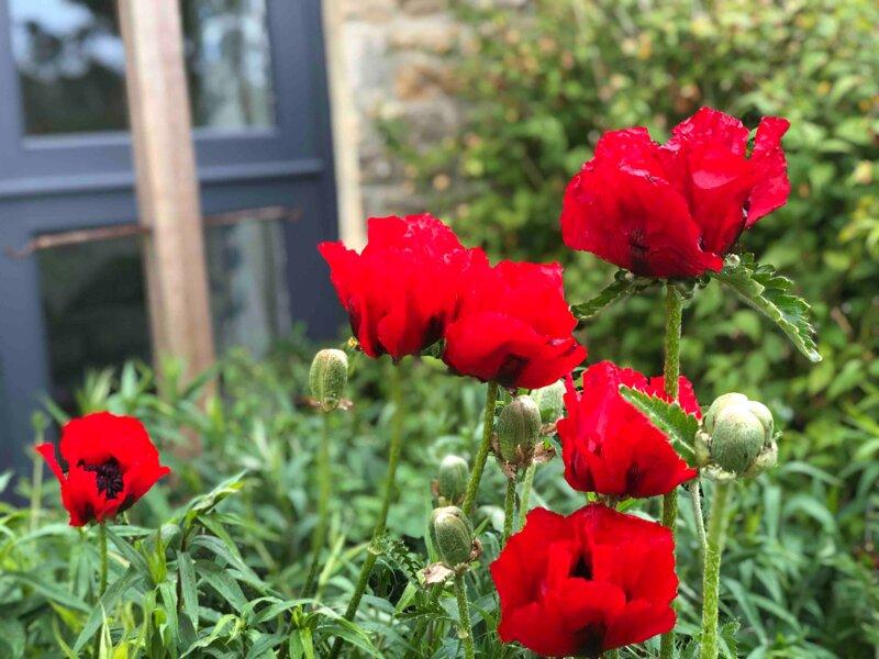 Garden Cottage at Fine House Farm, vacation rental in Allensford