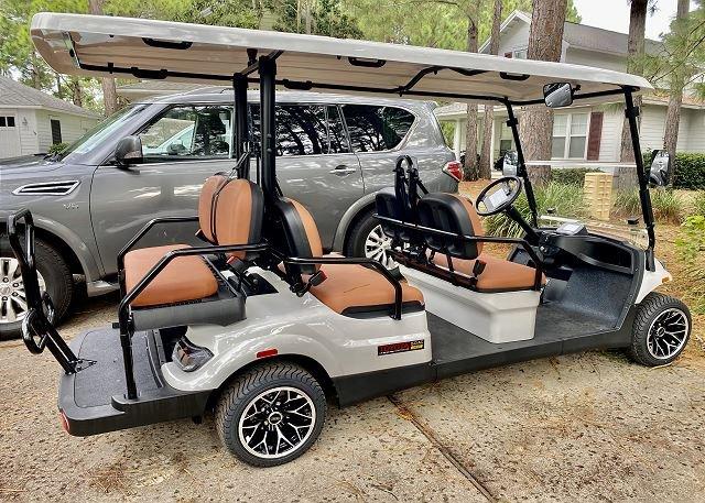 6 person golf cart