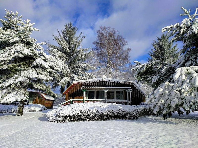 Gîtes / Chalets les Trois Hêtres, holiday rental in Bains-les-Bains