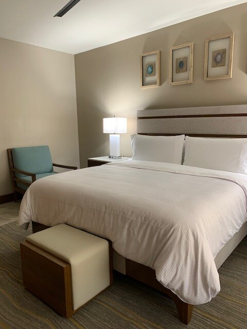 BRAND NEW 3 BEDROOM OCEANFRONT CONDO!, aluguéis de temporada em Quartier D'Orleans