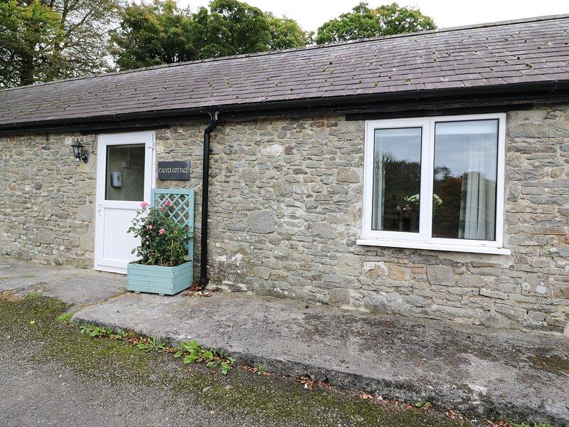 Calves Cottage, Llandysul, holiday rental in Cribyn