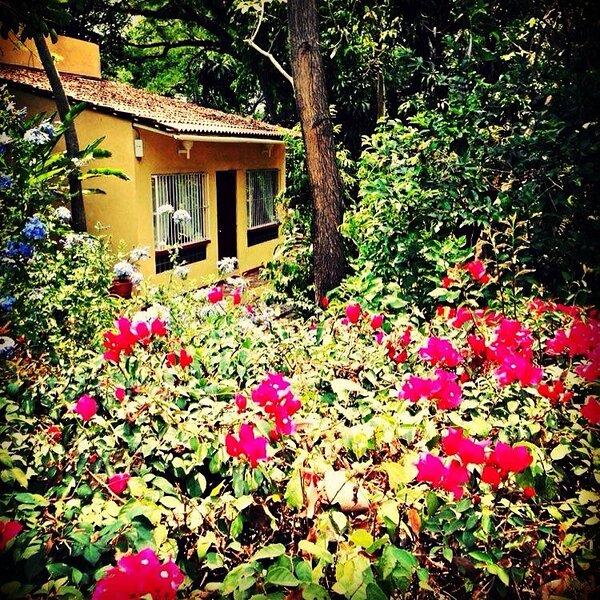 Villa Buganvilias / Coto Comalli, casa vacanza a Comala