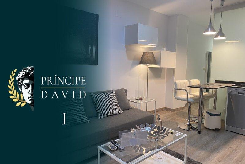 PRÍNCIPE DAVID I, vacation rental in Olias del Rey