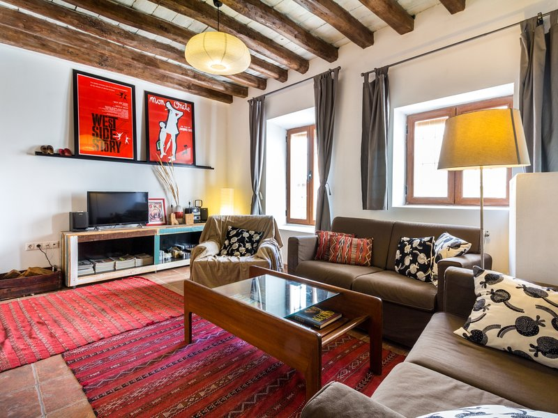 Lovely house with nice terrace, holiday rental in Saleres