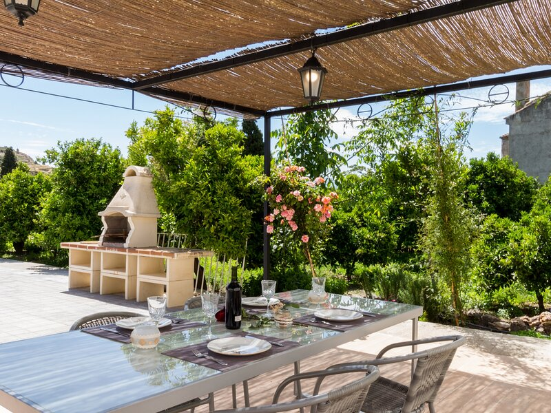 Bright house with terrace and orange garden – semesterbostad i Pinos del Valle