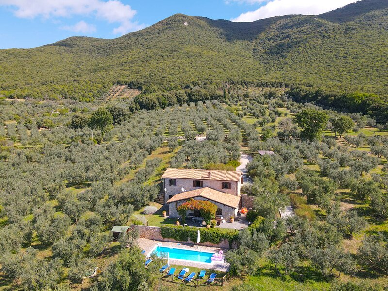 House with private & fenced pool 2km from Montecchio. Quiet area & nice views, location de vacances à Civitella del Lago