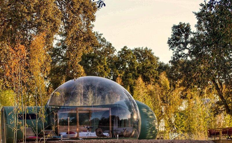 Sky Bubble Platón | El Toril Glamping Experience, holiday rental in Las Herencias