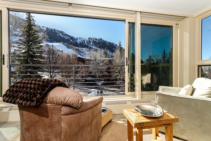 Durant 101B - Ski In/Out Panoramic  Mountain Views through floor to ceiling glass windows, holiday rental in Aspen