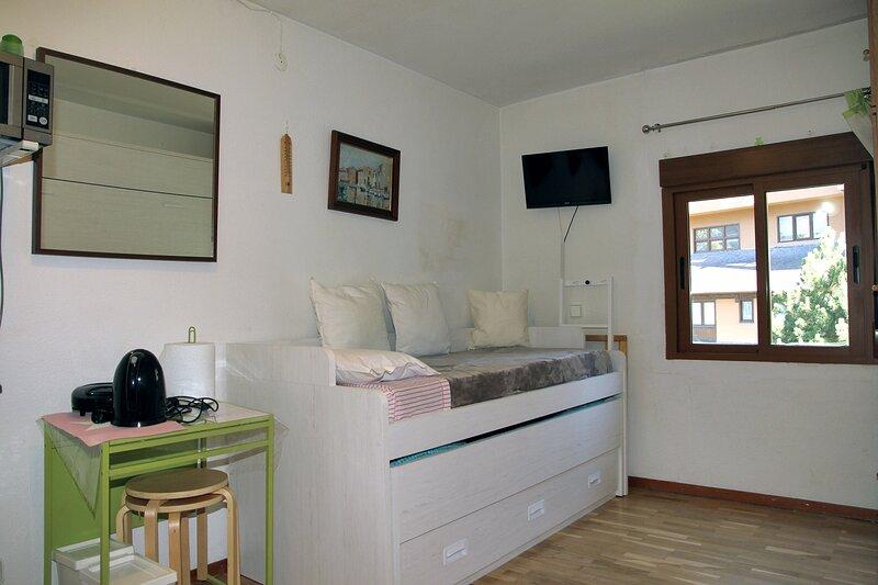 APARTAMENTO EN BAQUEIRA A 100 METROS DE LA TELECABINA, vacation rental in Baqueira