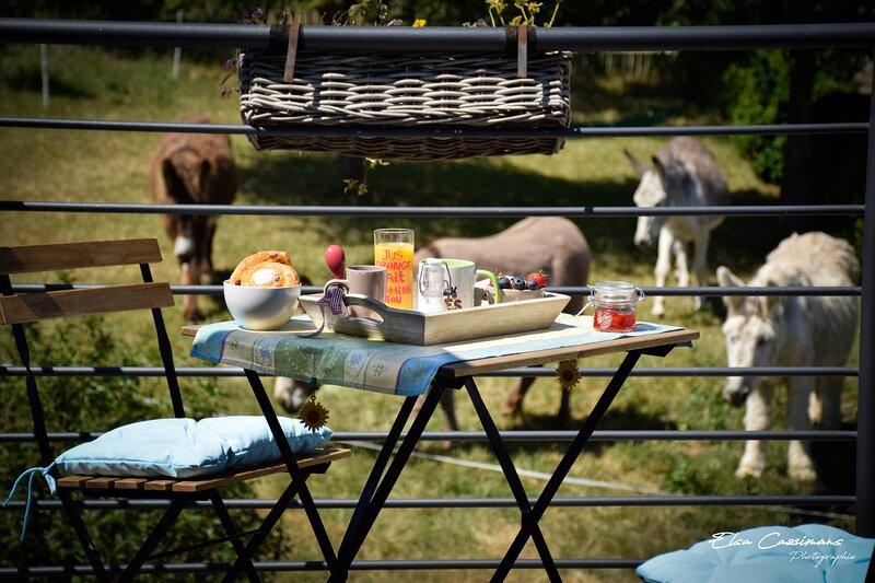 Le Fenil aux Ânes - Gîte Rural 3 épis, Ferienwohnung in Montigny-le-Tilleul