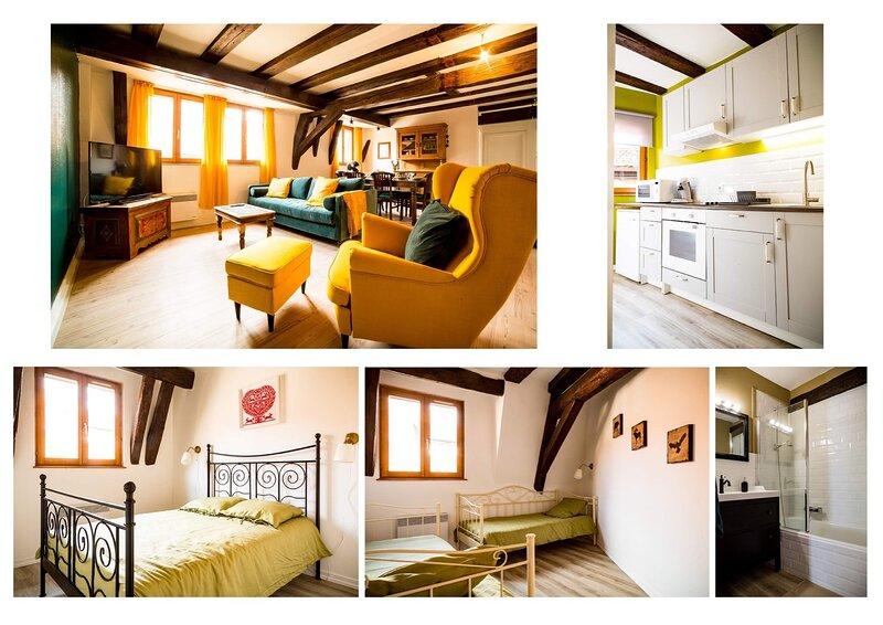 Résidence des Tanneurs - Sylvaner, location de vacances à Bernardswiller