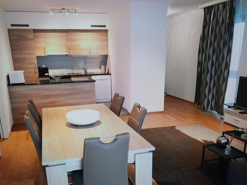 Spacious and Modern 3 bedrooms, holiday rental in Veyrier