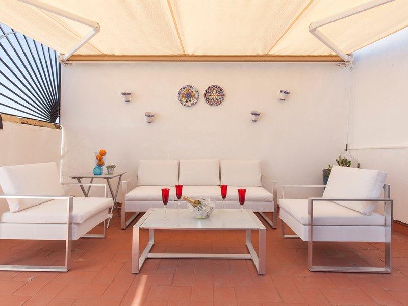 Spectacular apartment with private terrace / WIFI, location de vacances à Las Navas de la Concepcion
