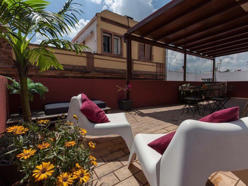 Fantastic 2 bedroom penthouse-large terrace Seville / Triana, vacation rental in Sanlucar la Mayor