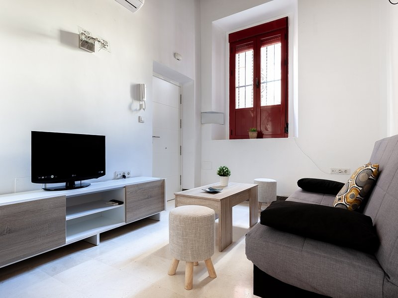 Rest at home and cultural life and monuments 4 px / WIFI, vacation rental in San Juan De Aznalfarache