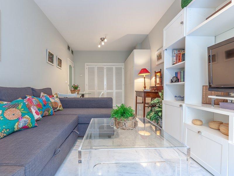 Quiet and elegance in the Andalusian capital 4 px-WIFI, holiday rental in Los Palacios y Villafranca