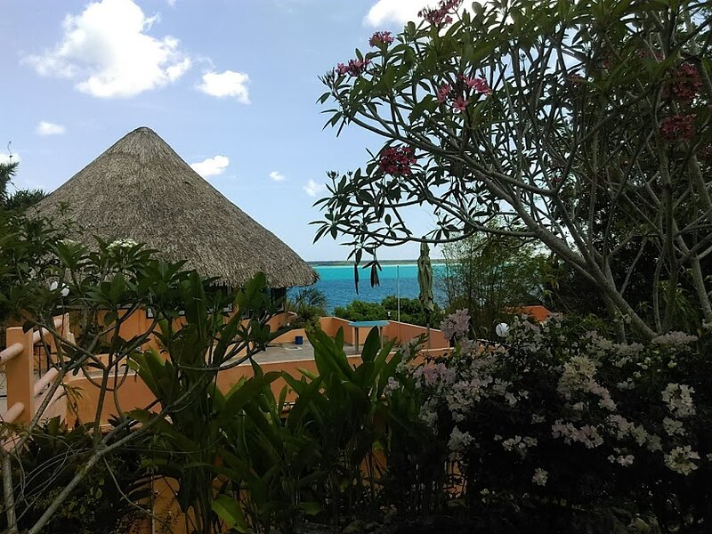 Agave Blue Bacalar Roof Top Palapa, holiday rental in Bacalar