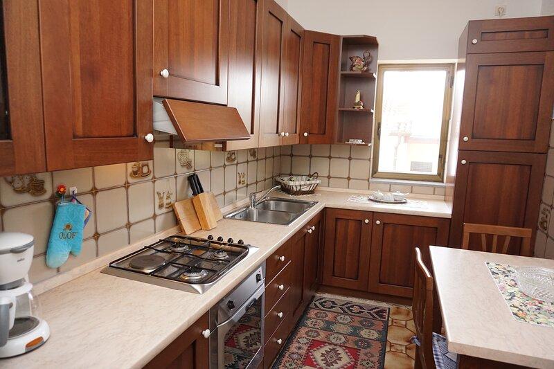 Apartment Mariella 1, holiday rental in Basanija
