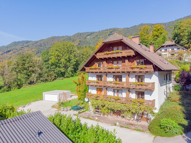 Sterngut, holiday rental in Attersee