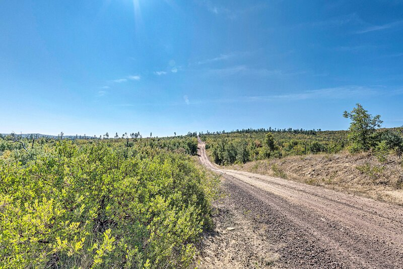 Road to Apache-Sitgreaves National Forest