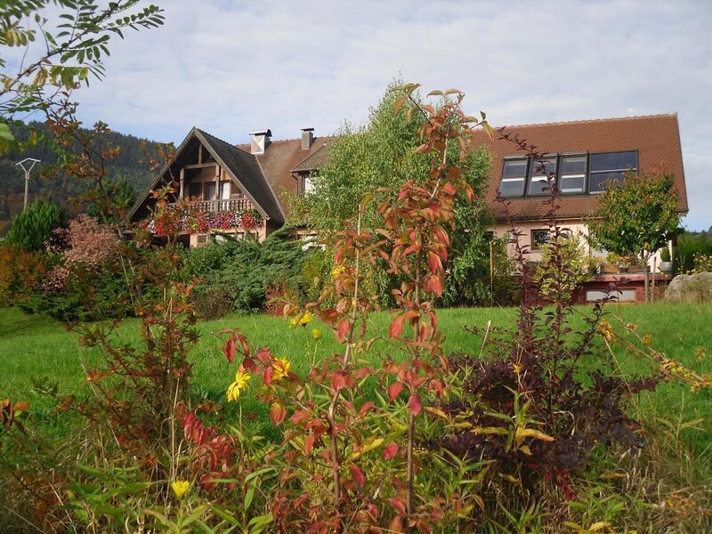 Amazing house with mountain view, holiday rental in Sainte-Marie-aux-Mines