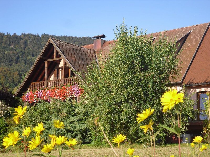 Apartment with mountain view, holiday rental in La Vancelle