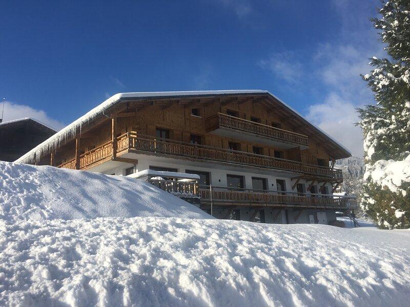 La Terrasse du Mont-Blanc, location de vacances à Cordon