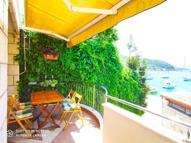 Villa Rosa Maria, holiday rental in Mokosica