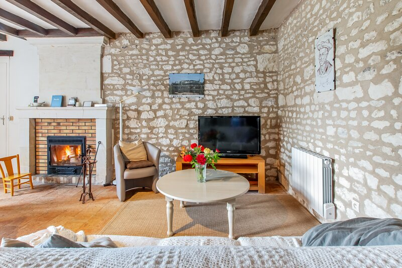 Spacious house with garden, holiday rental in Chaveignes