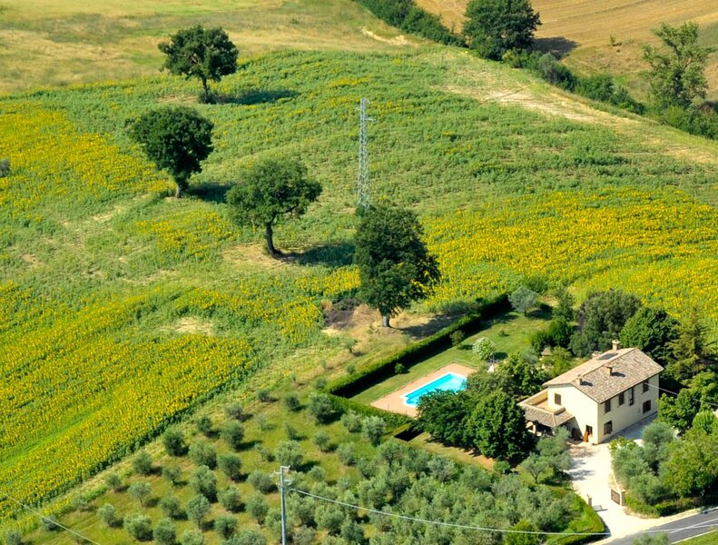 Detached villa with private pool and air conditoning at 1 km from town, holiday rental in Montecastrilli