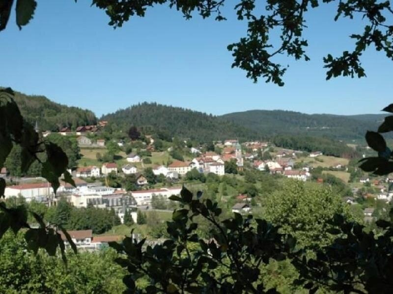 Le Petit Tholy, holiday rental in Champdray