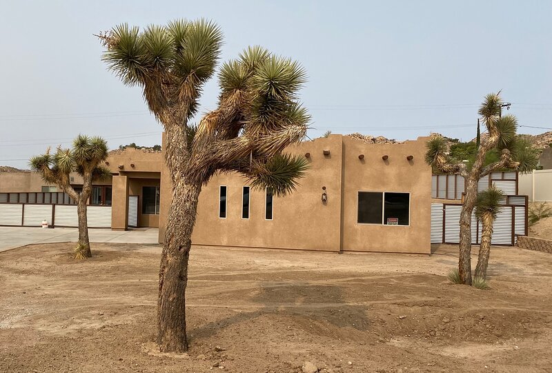 3 Joshua Trees inspired our 3 Tree Villa name
