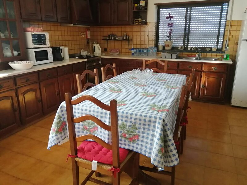 Nice house with garden & terrace, location de vacances à Ourem