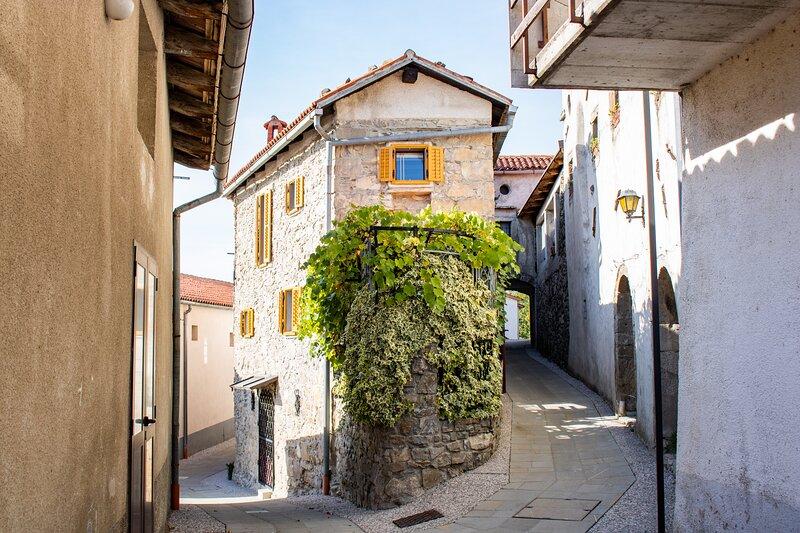 VILLA IRENA charming gem located in Vipava Valley, holiday rental in Crni Vrh