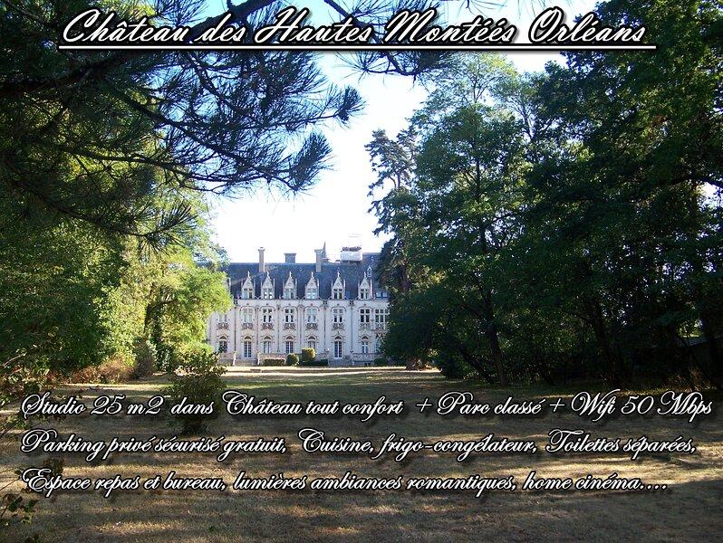 Château Des Hautes Montées Studio 25 m2 tout confort + Parc Classé 3 Ha ORLEANS, holiday rental in Saint-Hilaire-Saint-Mesmin