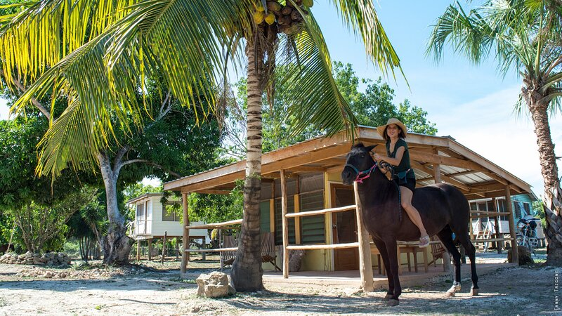 Cosy cabana in a tropical horse farm, holiday rental in Corozal