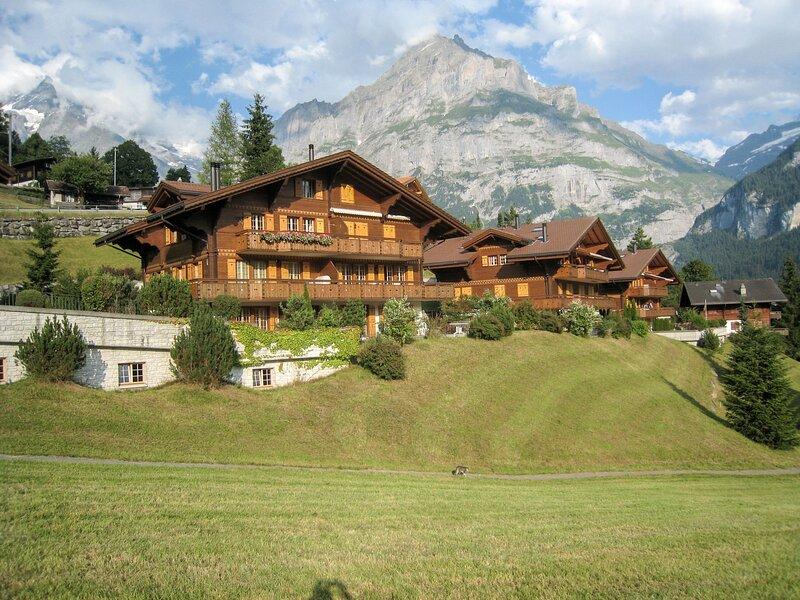 Chalet Nagano, holiday rental in Grindelwald