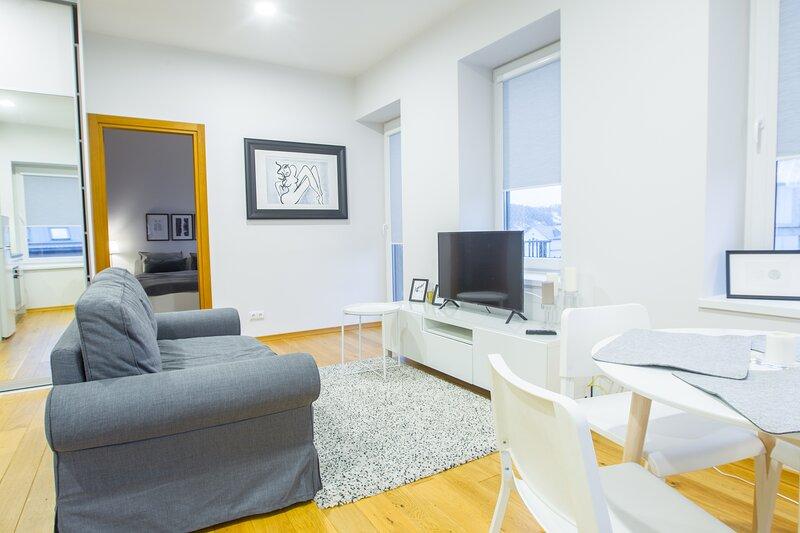 Bright one bedroom apartment in old town, alquiler de vacaciones en Condado de Kaunas