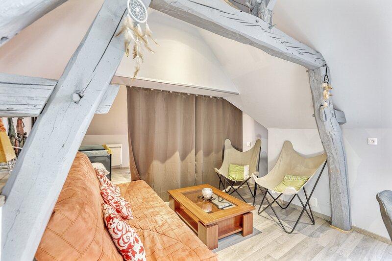 Apartment in Romorantin-Lanthenay, holiday rental in Romorantin-Lanthenay