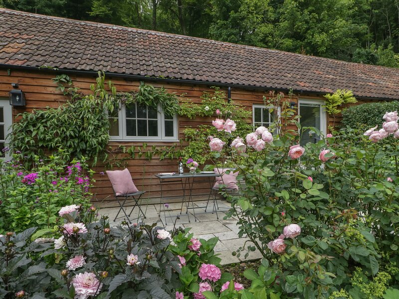 Barn Owl Cottage, East Knoyle, holiday rental in Chilmark