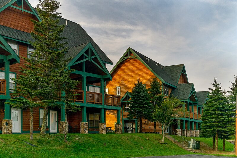 3 Br : Camp 4 #1, vacation rental in Snowshoe